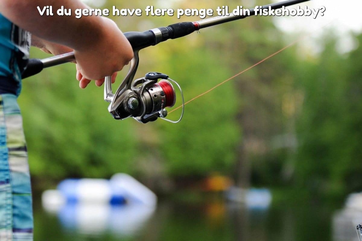 Vil du gerne have flere penge til din fiskehobby?